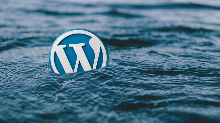 Choosing the Best WordPress Caching Plugin for your VPS Server